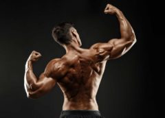 5 Back And bicep Exercise