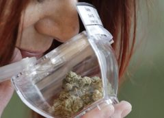 Legal Marijuana Causes Business to Thrive